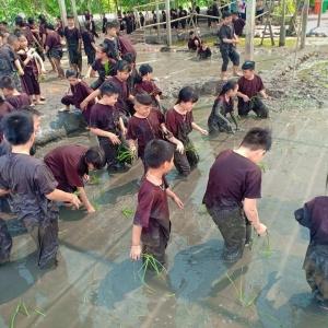 Teambuilding Tiền Giang -...